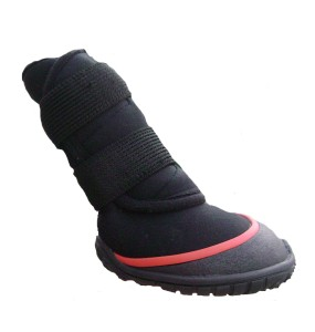 neoprene winter dog boot
