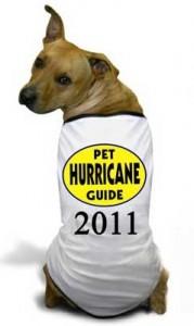 hurricane-dog
