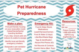 hurricane-prepare for pets