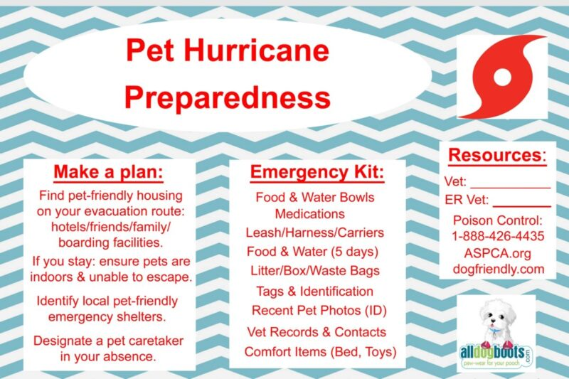 essay on hurricanes preparedness