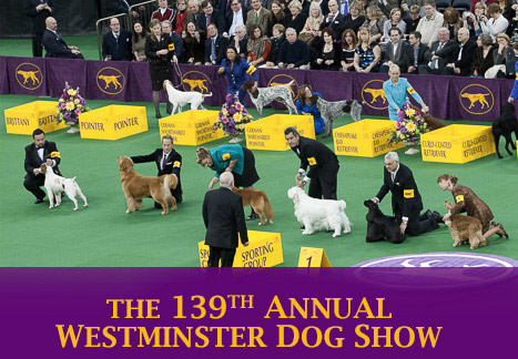 Westminster Dog Show  Invitations
