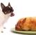 thanksgiving turkey dog