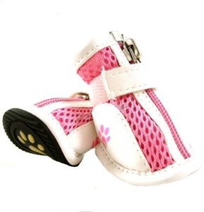 summer kixx dog booties