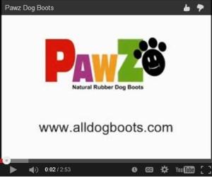 pawz video