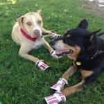 Bella and Tina Boots