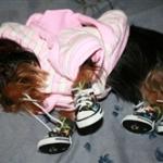 Ahi ties her own shoes