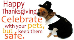 Thanksgiving Keep Safe Pets