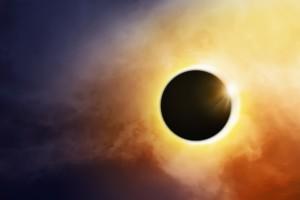 solareclipse pet safety