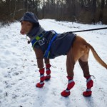 New red boots for a winter walk