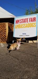 Ellie-at-State-Fair