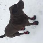 Samson Wears Red Kicks